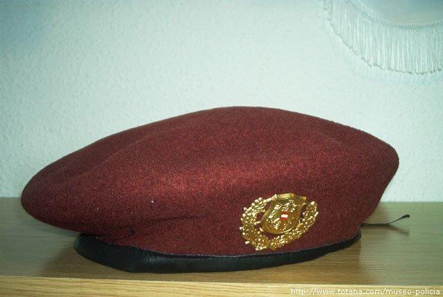 Cuerpo Especial Policia  (Austria)